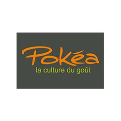 logo pokea-redim